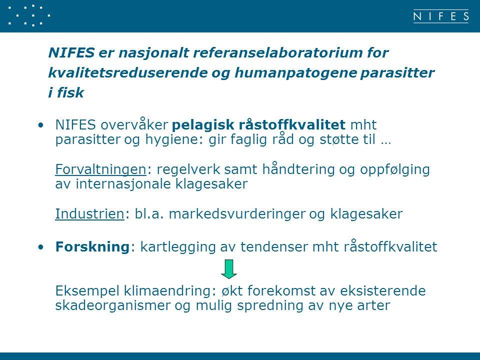 NIFES er nasjonalt referanselaboratorium for kvalitetsreduserende og humanpatogene parasitter i fisk
