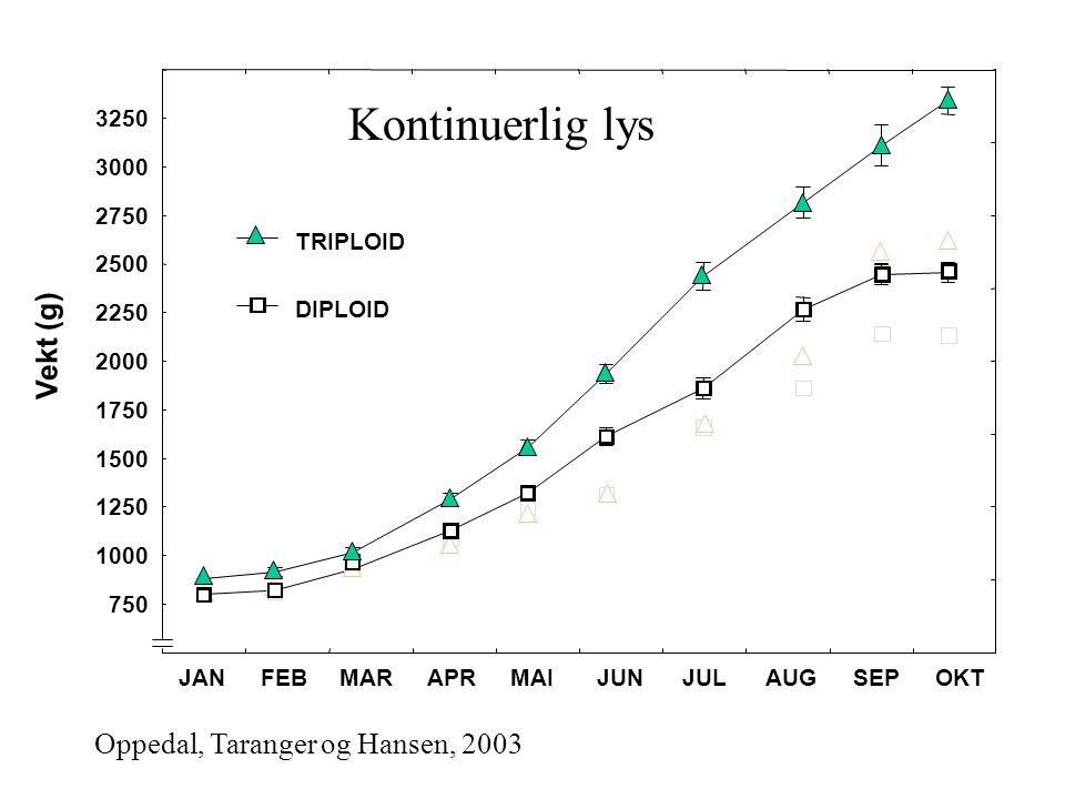 Kontinuerlig lys Vekt (g) Oppedal, Taranger og Hansen, 2003 3250 3000