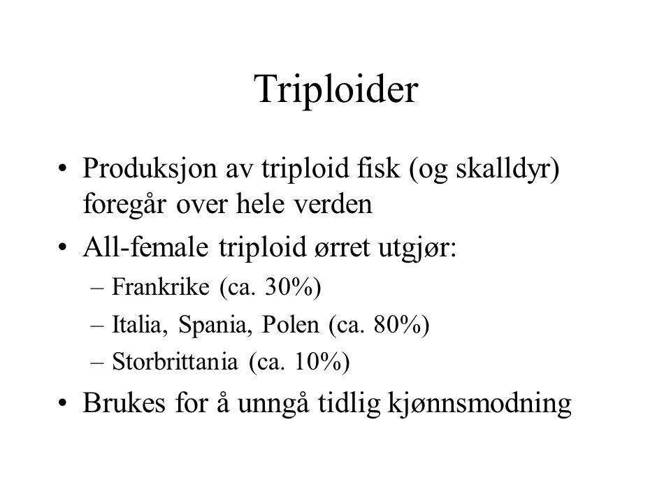 Triploider Produksjon av triploid fisk (og skalldyr) foregår over hele verden. All-female triploid ørret utgjør: