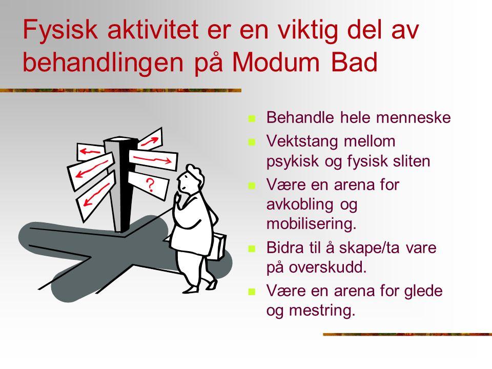 Fysisk aktivitet er en viktig del av behandlingen på Modum Bad