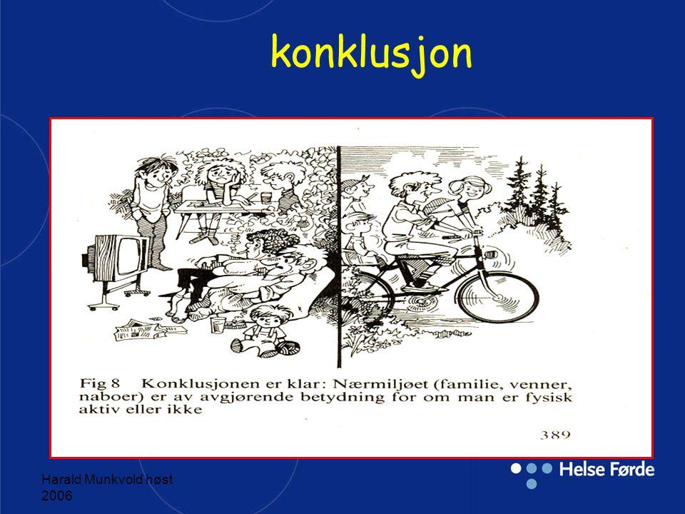 konklusjon Harald Munkvold høst 2006