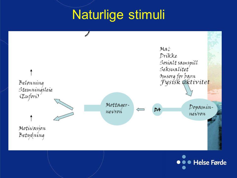 Naturlige stimuli Fysisk aktivitet Fysisk aktivitet