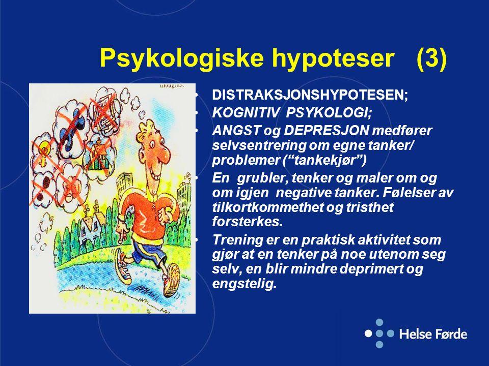 Psykologiske hypoteser (3)