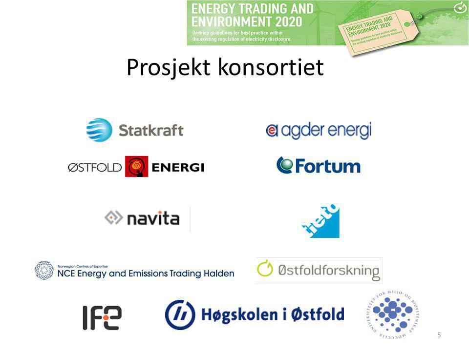 Prosjekt konsortiet