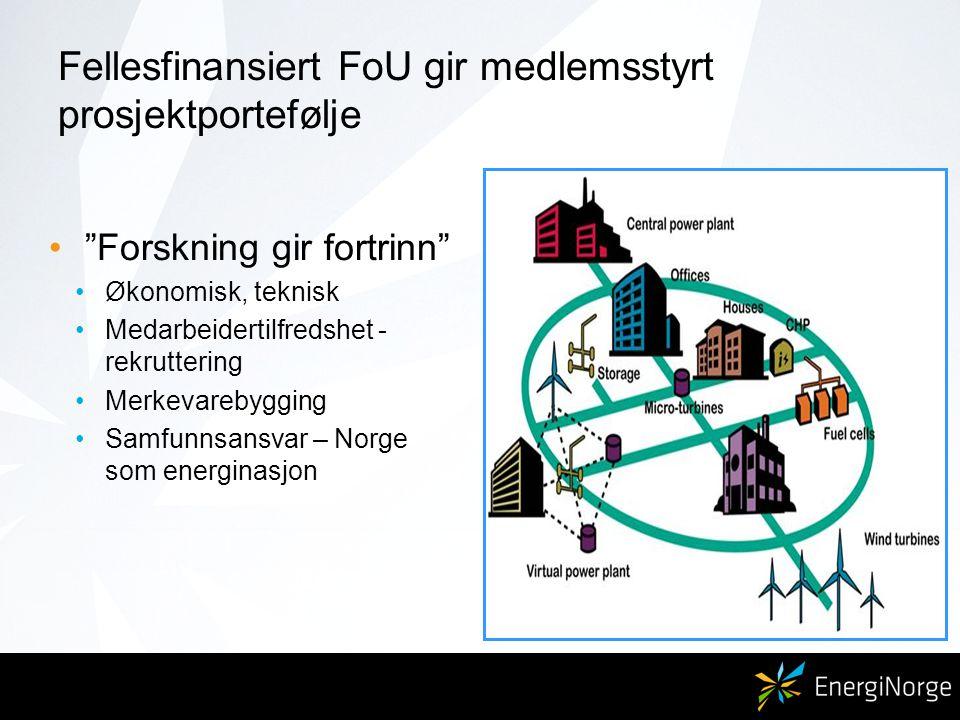 Fellesfinansiert FoU gir medlemsstyrt prosjektportefølje