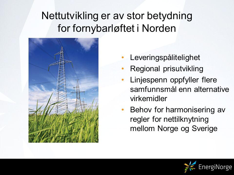 Nettutvikling er av stor betydning for fornybarløftet i Norden