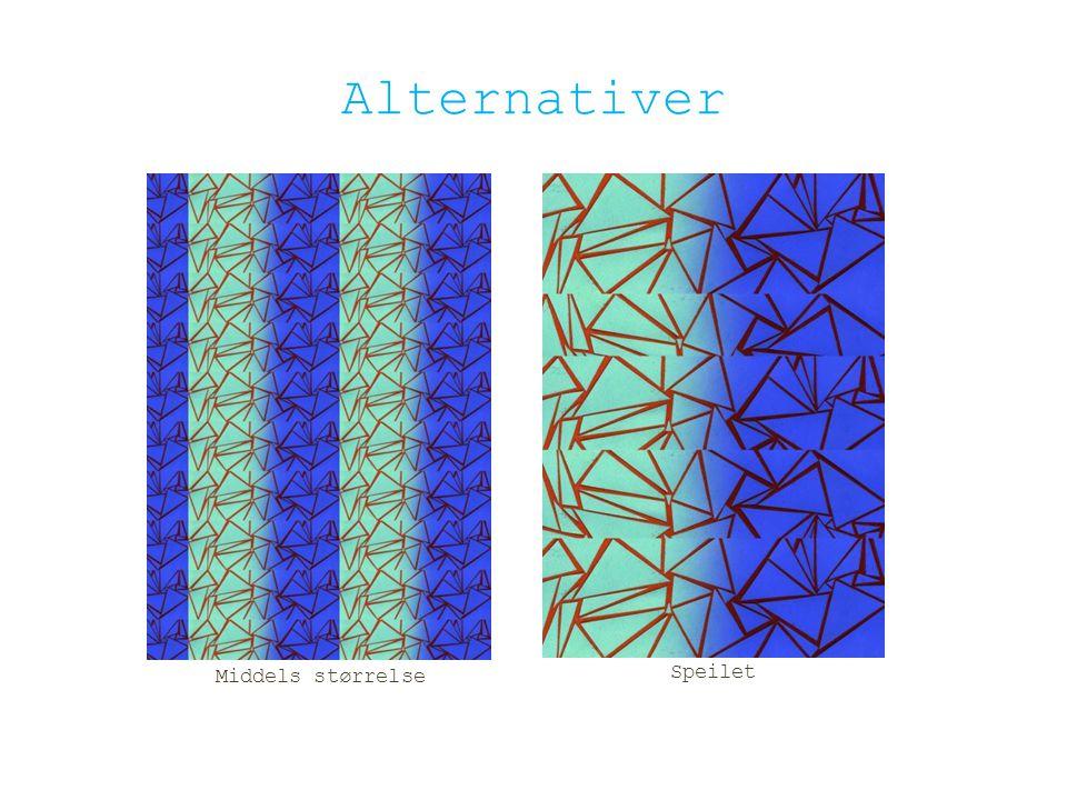 Alternativer Middels størrelse Speilet