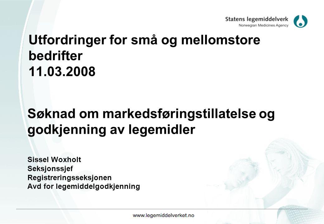 Utfordringer for små og mellomstore bedrifter 11.03.2008