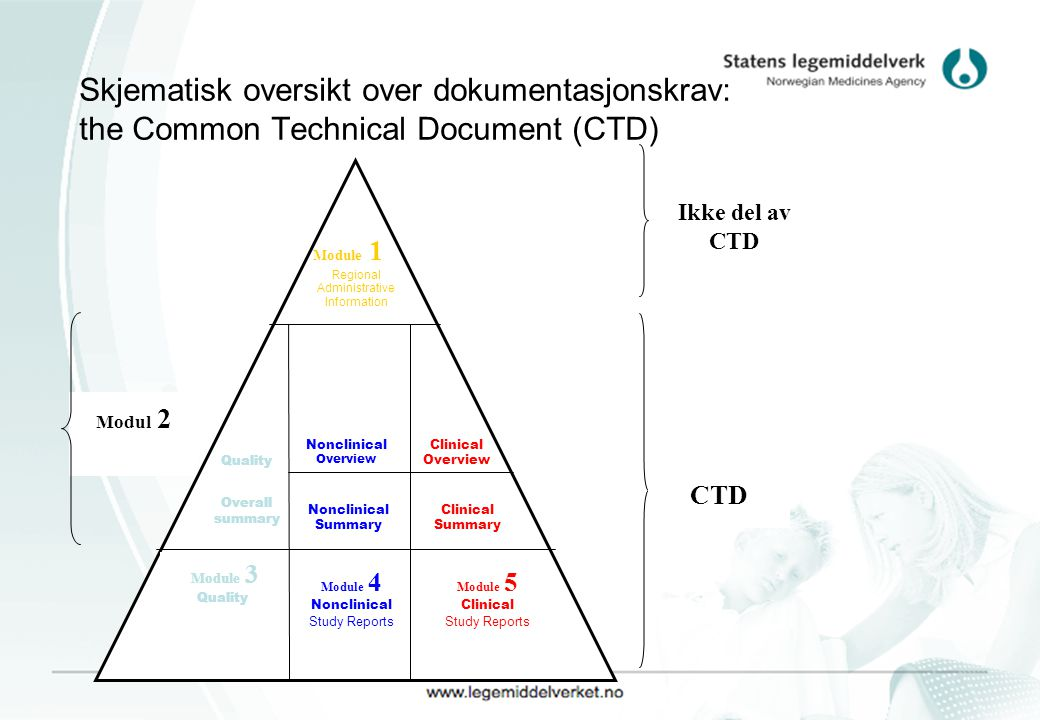 Skjematisk oversikt over dokumentasjonskrav: the Common Technical Document (CTD)