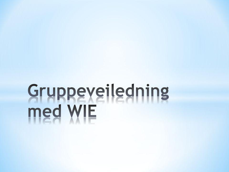 Gruppeveiledning med WIE