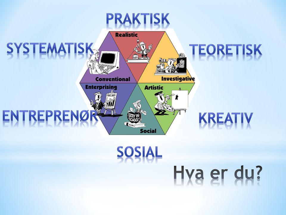 praktisk systematisk teoretisk entreprenør kreativ sosial Hva er du