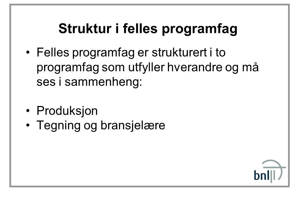 Struktur i felles programfag