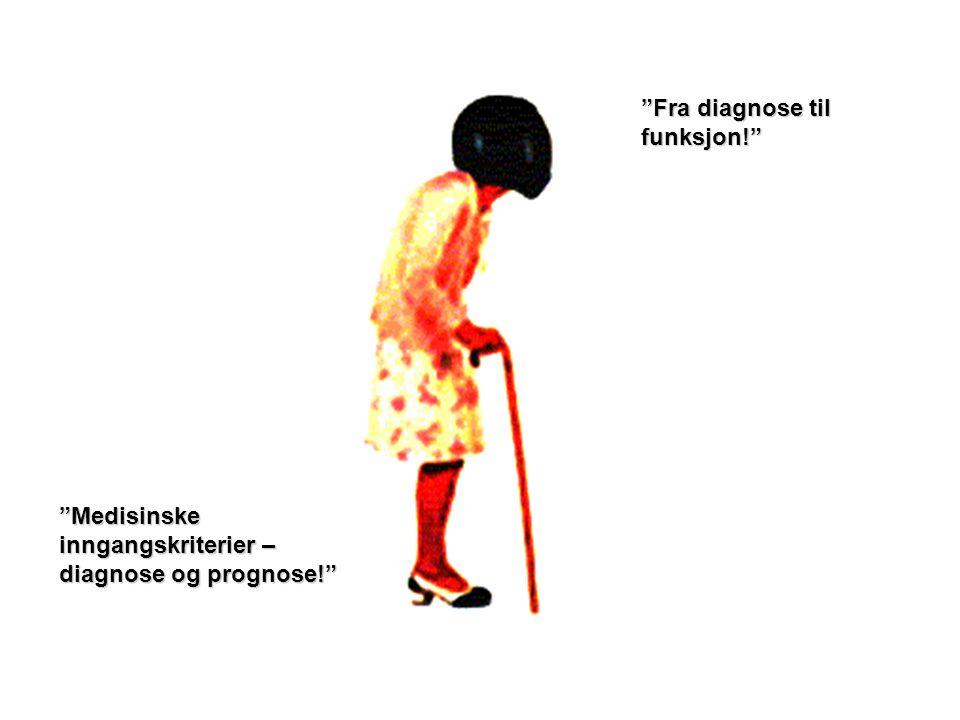 Fra diagnose til funksjon!