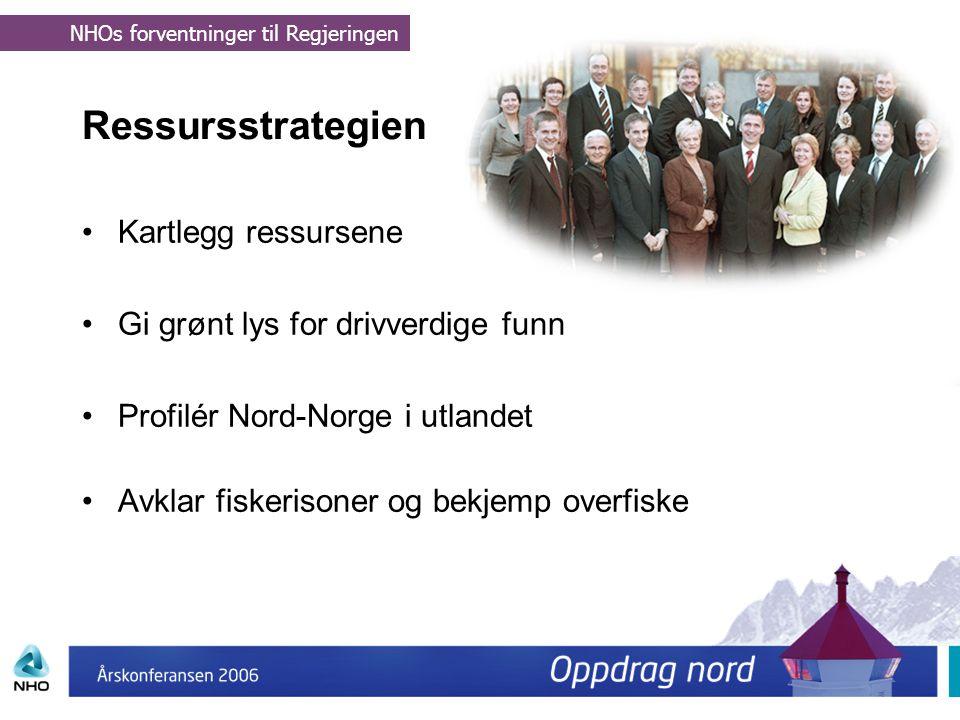 Ressursstrategien Kartlegg ressursene
