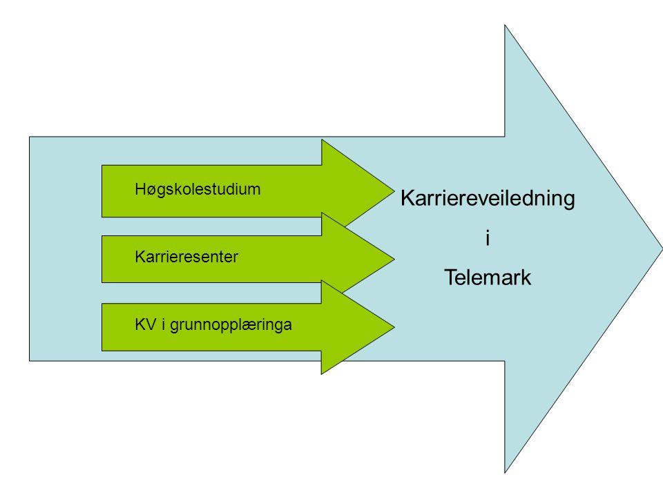 Karriereveiledning i Telemark Høgskolestudium Karrieresenter