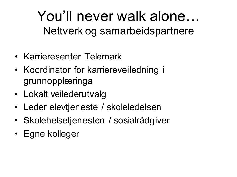 You'll never walk alone… Nettverk og samarbeidspartnere
