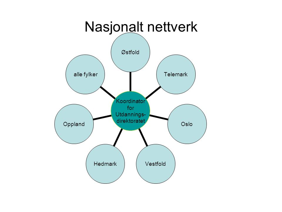 Nasjonalt nettverk