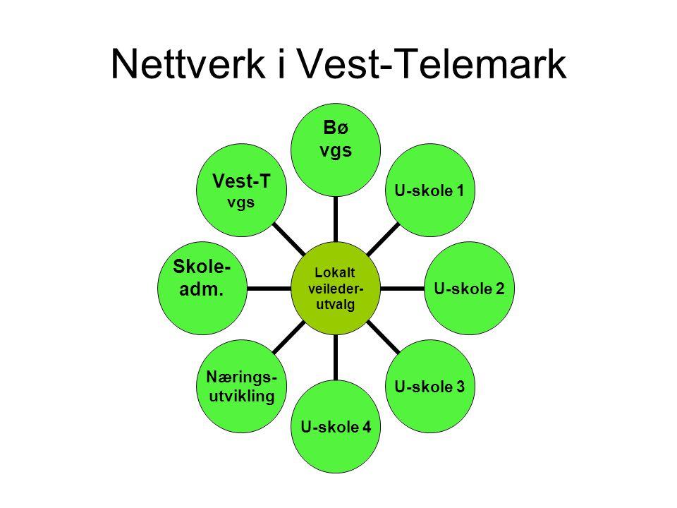 Nettverk i Vest-Telemark