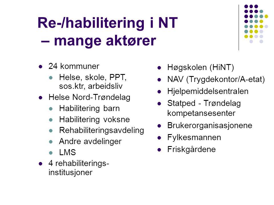 Re-/habilitering i NT – mange aktører