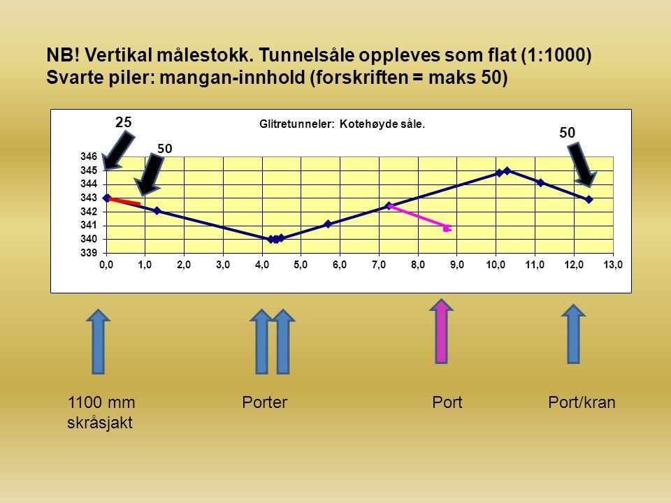 NB! Vertikal målestokk. Tunnelsåle oppleves som flat (1:1000)