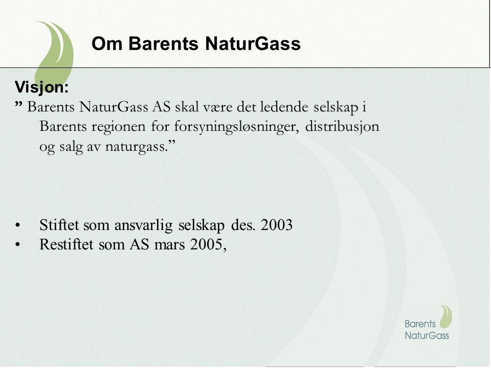 Om Barents NaturGass Visjon: