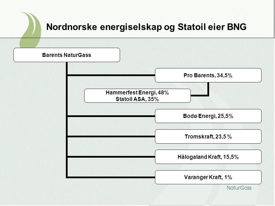 Nordnorske energiselskap og Statoil eier BNG