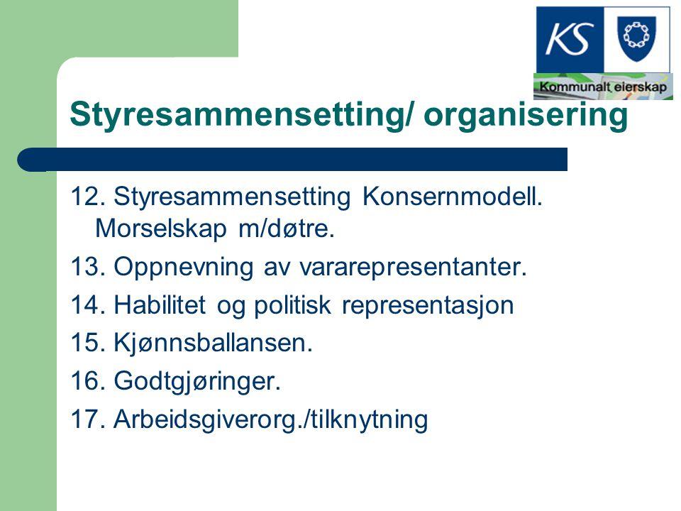 Styresammensetting/ organisering