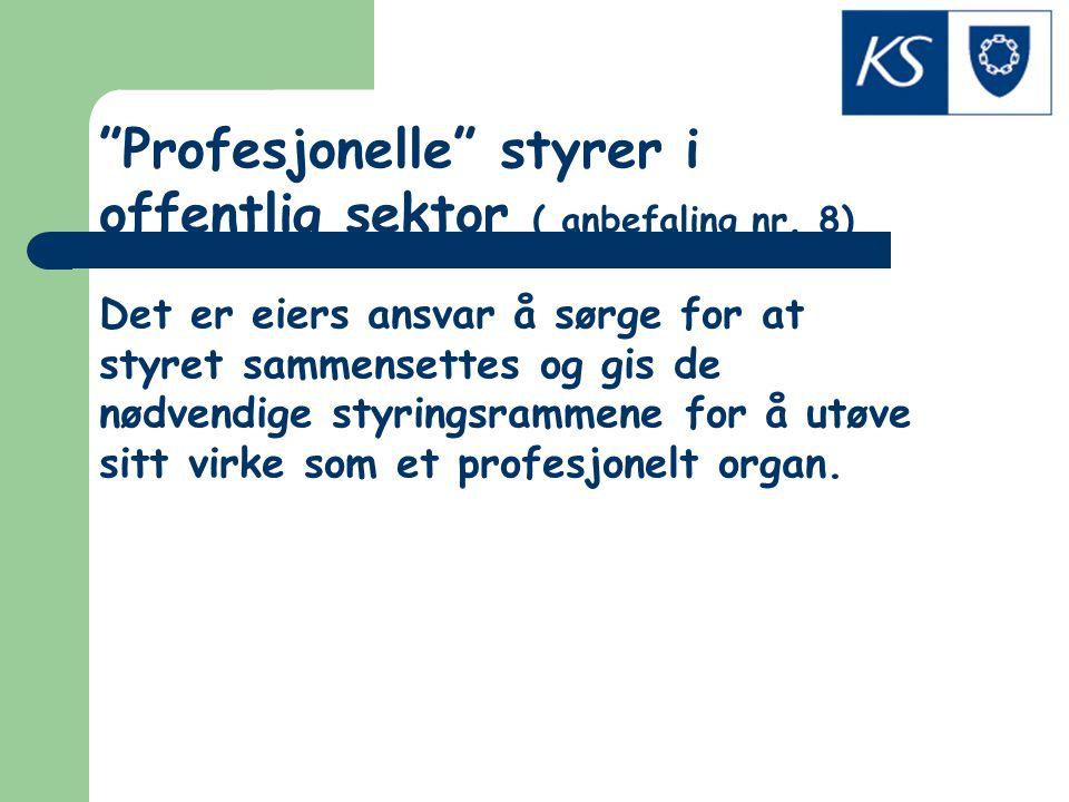 Profesjonelle styrer i offentlig sektor ( anbefaling nr. 8)