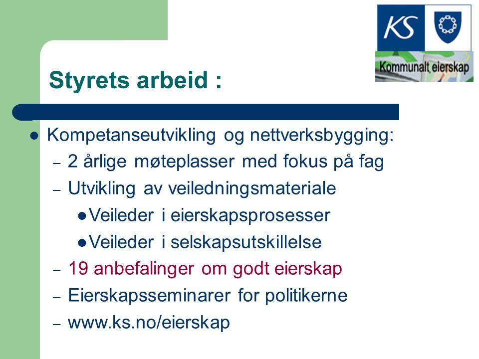 Styrets arbeid : Kompetanseutvikling og nettverksbygging: