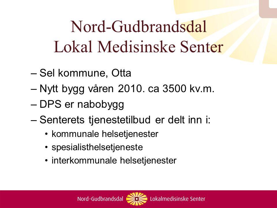 Nord-Gudbrandsdal Lokal Medisinske Senter