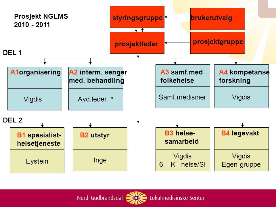 Prosjekt NGLMS 2010 - 2011. styringsgruppe. brukerutvalg. prosjektgruppe. prosjektleder. DEL 1.