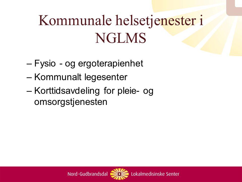 Kommunale helsetjenester i NGLMS