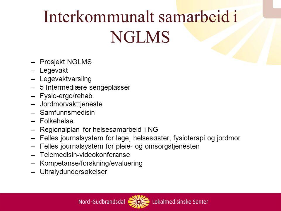 Interkommunalt samarbeid i NGLMS