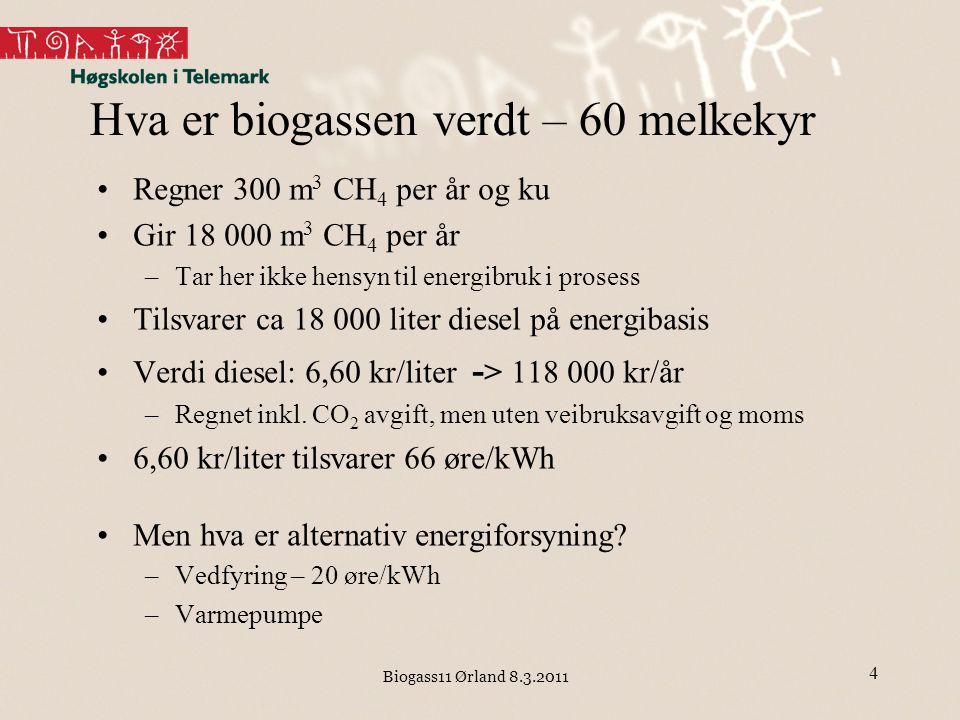 Hva er biogassen verdt – 60 melkekyr