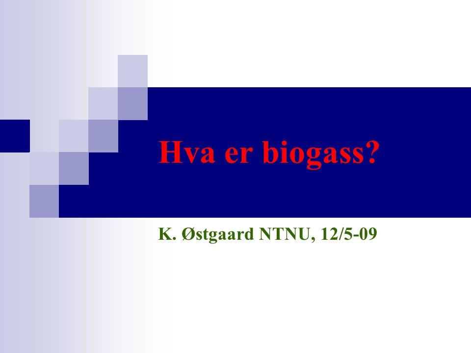 Hva er biogass K. Østgaard NTNU, 12/5-09 SJEKK KLOKKA: 20 MIN