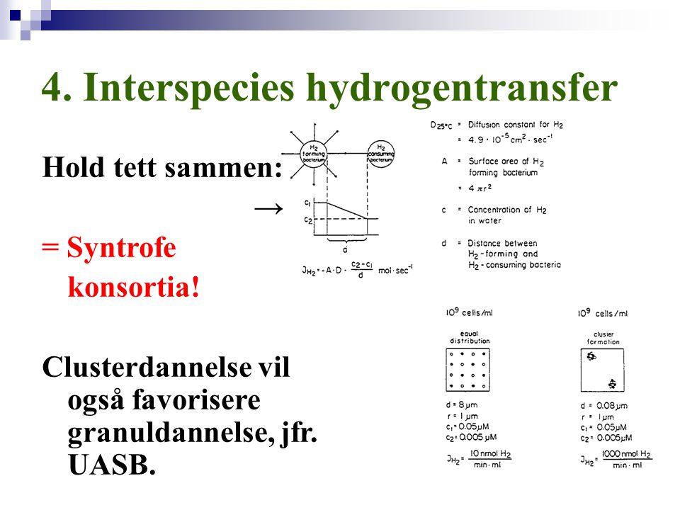 4. Interspecies hydrogentransfer