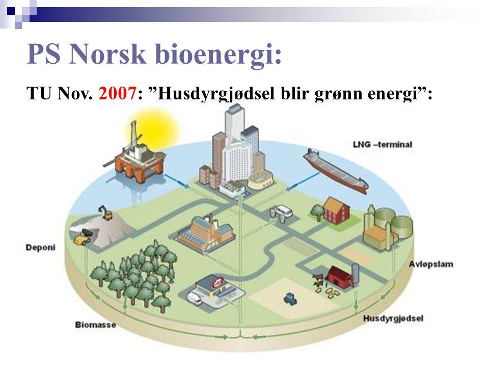 PS Norsk bioenergi: TU Nov. 2007: Husdyrgjødsel blir grønn energi :