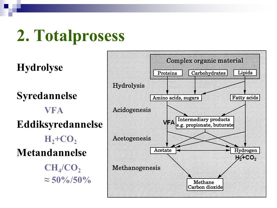 2. Totalprosess Hydrolyse Syredannelse VFA Eddiksyredannelse H2+CO2