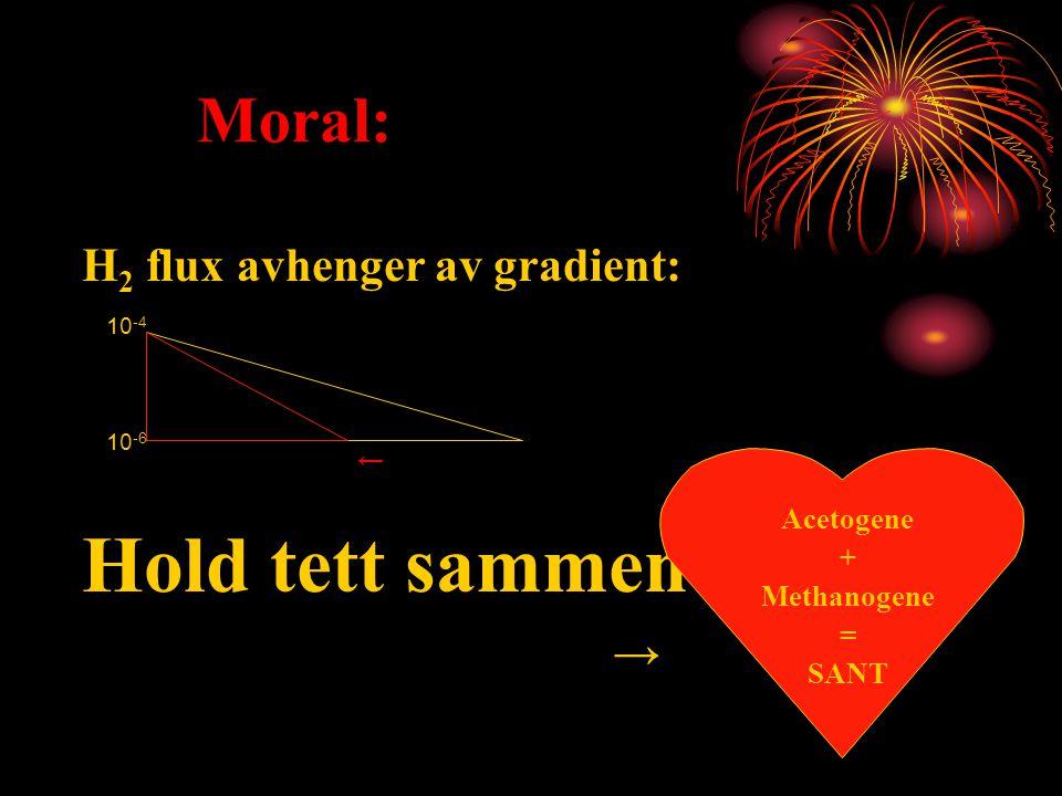 Hold tett sammen Moral: H2 flux avhenger av gradient: → Acetogene +