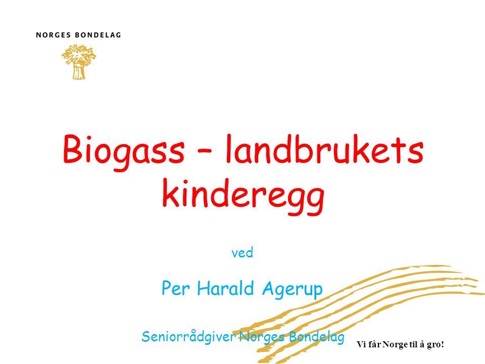 Biogass – landbrukets kinderegg