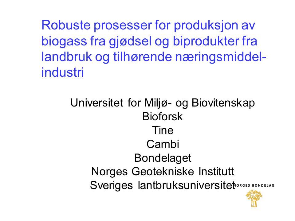 Robuste prosesser for produksjon av biogass fra gjødsel og biprodukter fra landbruk og tilhørende næringsmiddel-industri