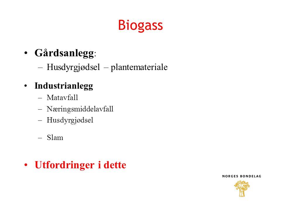 Biogass Gårdsanlegg: Utfordringer i dette
