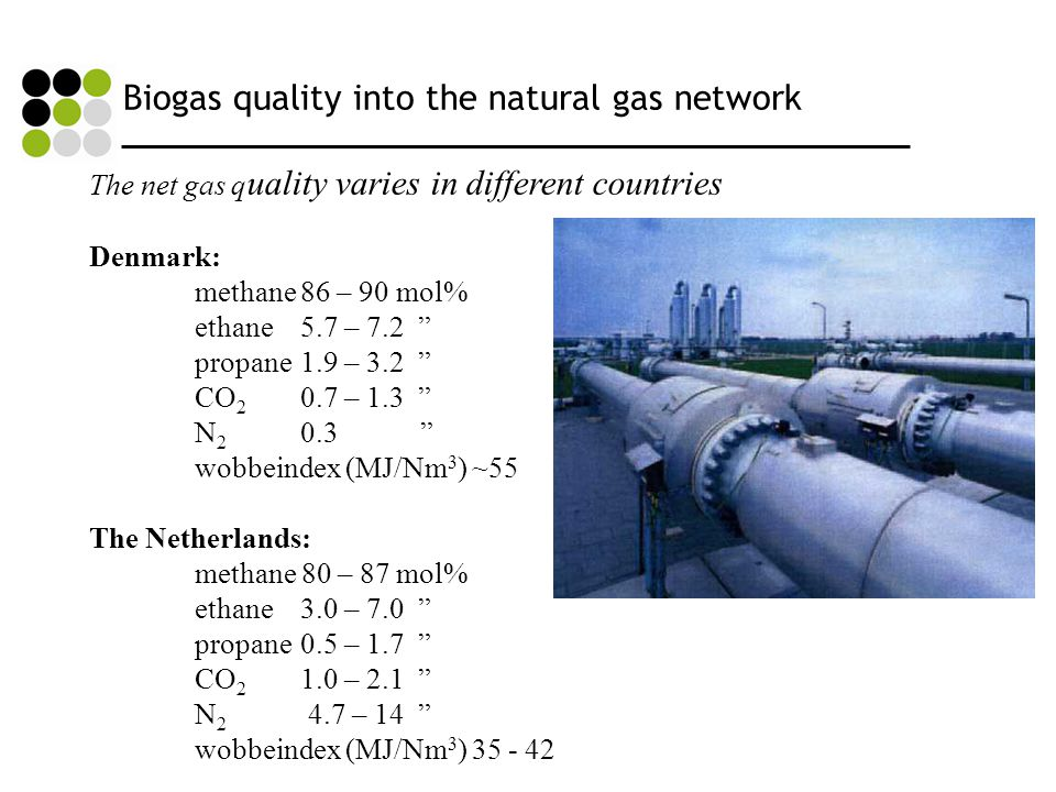 Biogas quality into the natural gas network