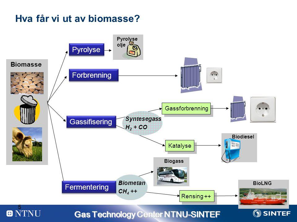 Hva får vi ut av biomasse