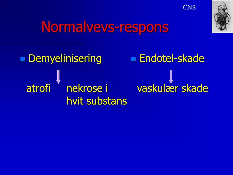 Normalvevs-respons Demyelinisering atrofi nekrose i hvit substans