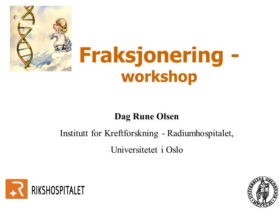 Fraksjonering - workshop