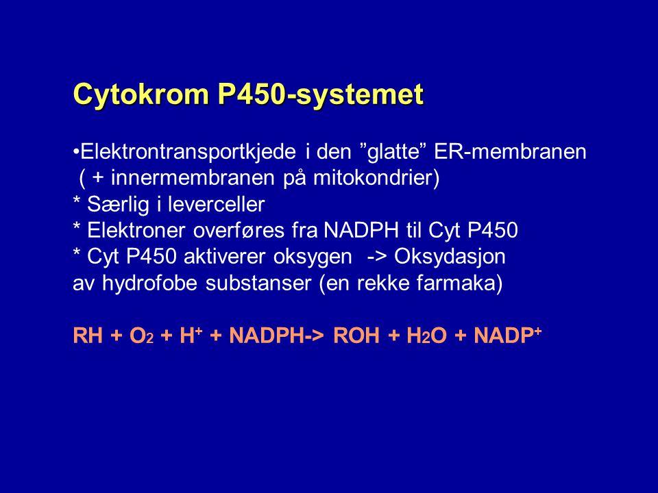 Cytokrom P450-systemet Elektrontransportkjede i den glatte ER-membranen. ( + innermembranen på mitokondrier)