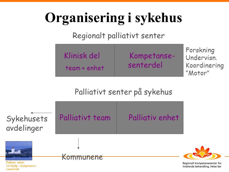 Organisering i sykehus
