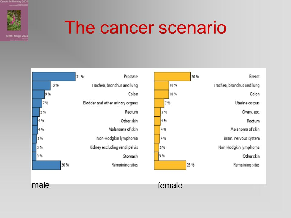 The cancer scenario male female