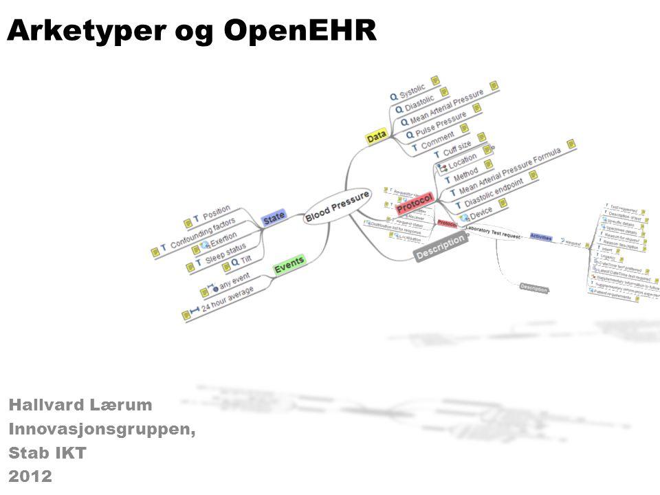 Hallvard Lærum Innovasjonsgruppen, Stab IKT 2012